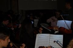 Power-Flower-Orchestra-4