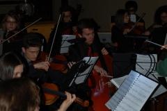 Power-Flower-Orchestra-7