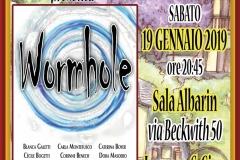 2019.01.19-Wormhole
